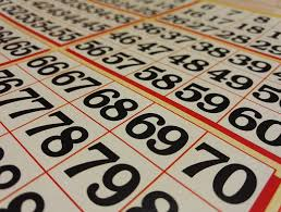 Bingo Online New Zealand